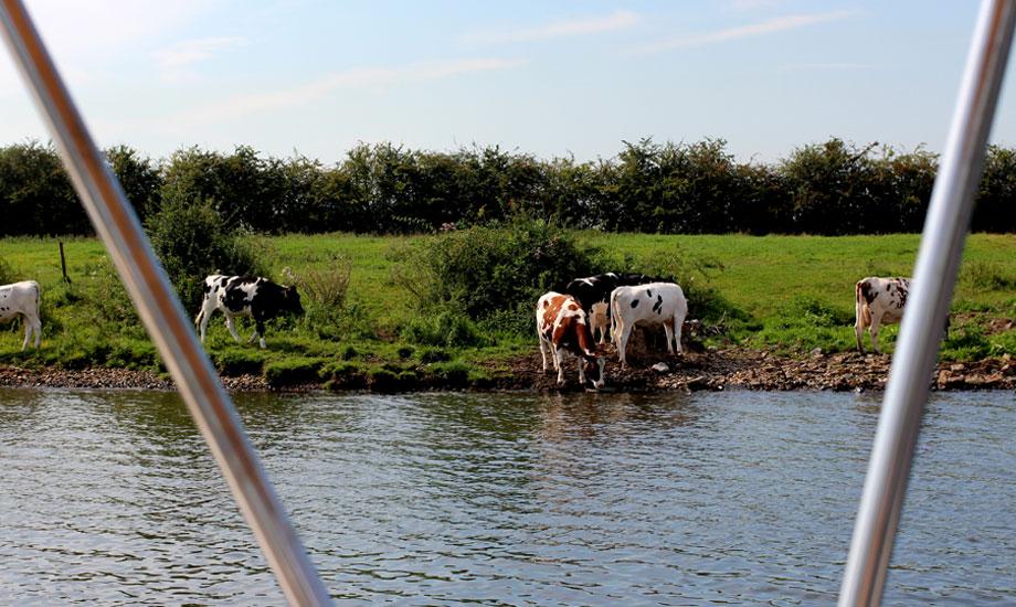 kanalveien-til-middelhavet-ankerplass-mook (6)