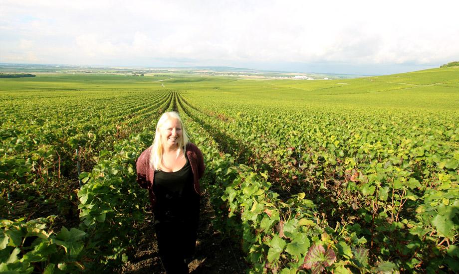 vingårder (9)