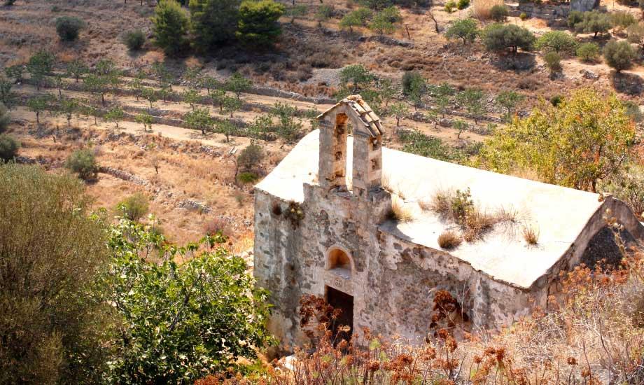 Aegina-hellas (7)