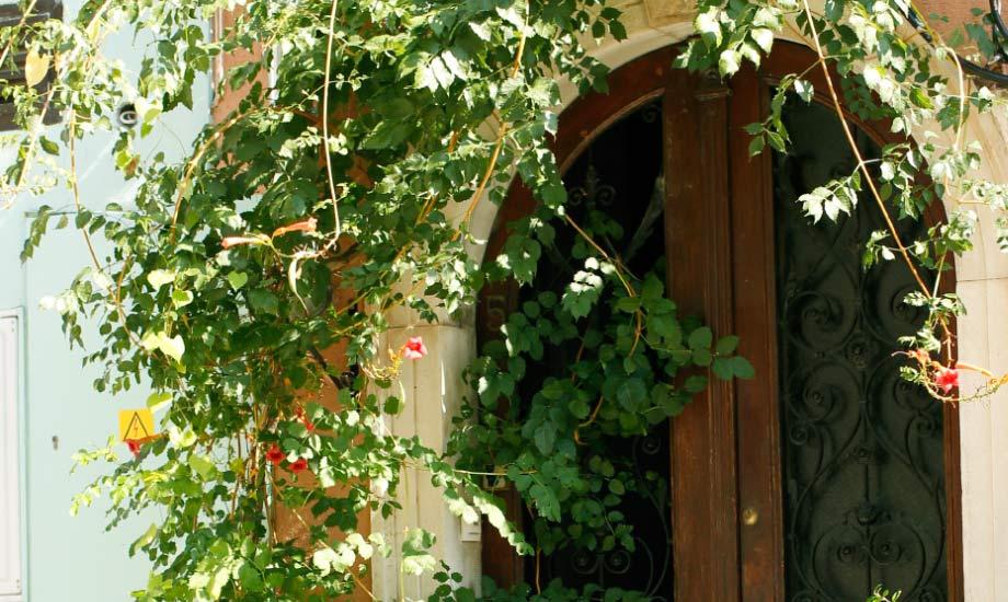 Grønt og fint i gamlebyen