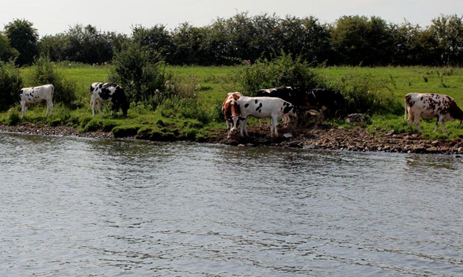 kanalveien-til-middelhavet-ankerplass-mook (2)