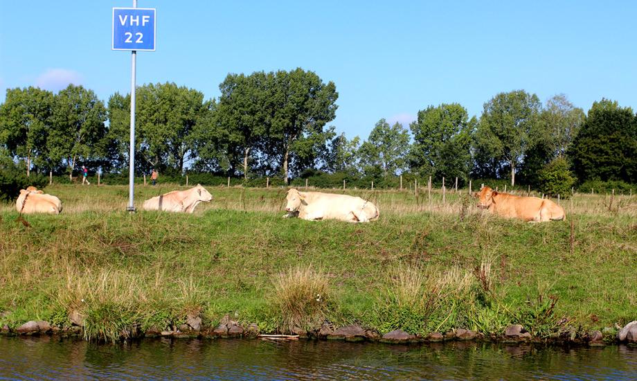 kanalveien-til-middelhavet-maastrich (7)