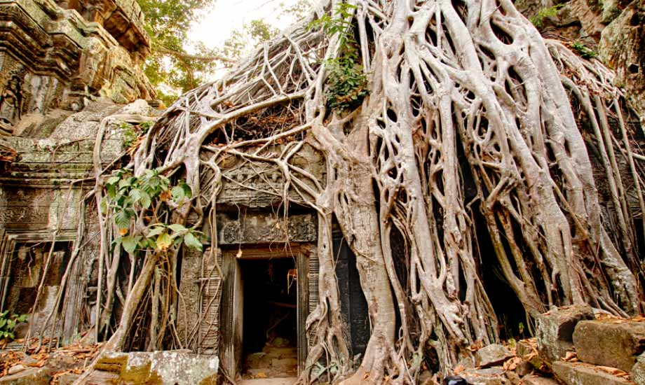 siem reap - kambodsja (7)
