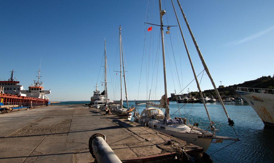 shejing-harbour-alania-albany-7