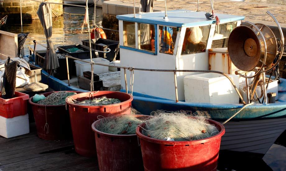 Fiskebåtene som ligger innerst i havna i Piran